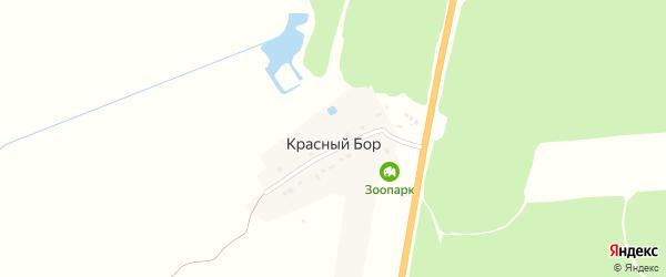 Дачная улица на карте поселка Красного Бора с номерами домов