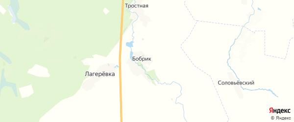 Карта территории Игрицкого сельского поселения Брянской области с районами, улицами и номерами домов