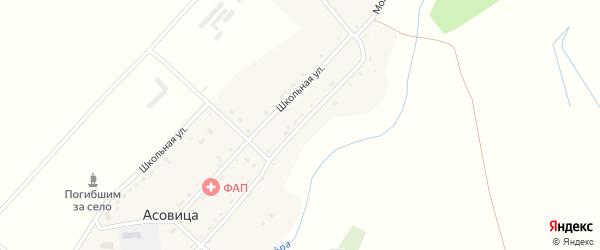 Молодежная улица на карте села Асовицы с номерами домов