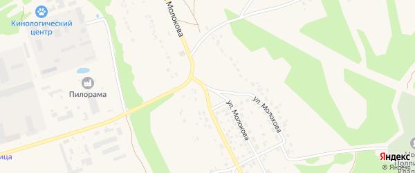 Улица Молокова на карте поселка Большое Полпино с номерами домов