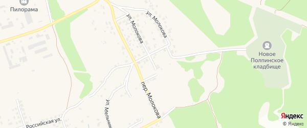 Переулок Молокова на карте поселка Большое Полпино с номерами домов