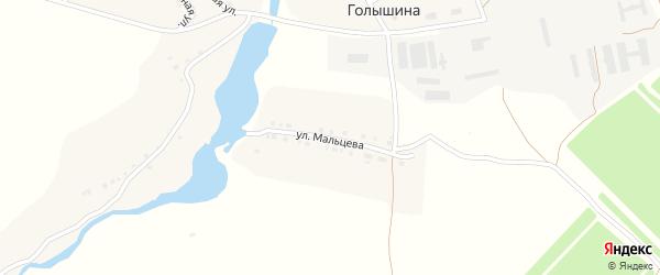 Улица Мальцева на карте села Голышина с номерами домов