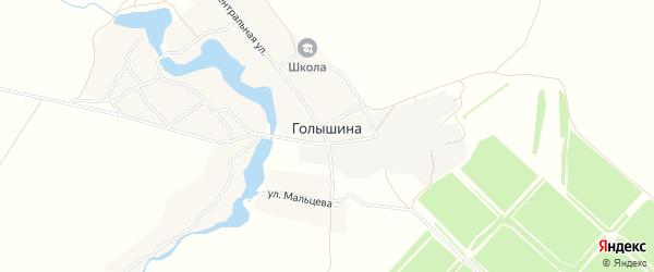 Карта села Голышина в Брянской области с улицами и номерами домов
