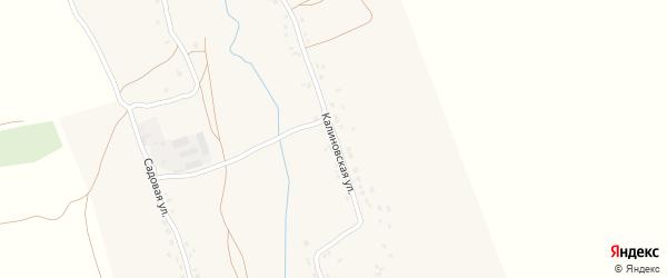 Калиновская улица на карте села Бяково с номерами домов
