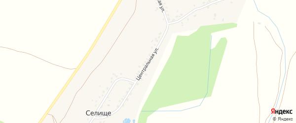 Центральная улица на карте деревни Селища с номерами домов