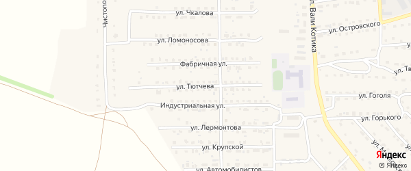 Улица Тютчева на карте поселка Локтя с номерами домов