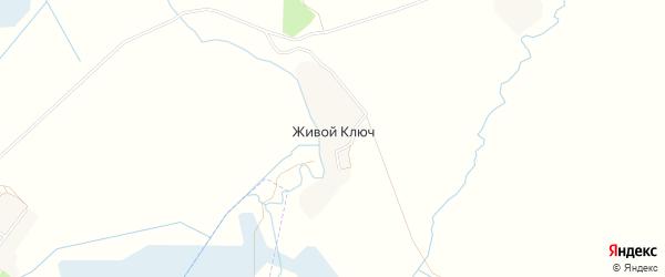 Карта поселка Живого Ключа в Брянской области с улицами и номерами домов