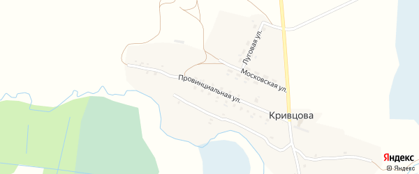 Провинциальная улица на карте деревни Кривцова с номерами домов