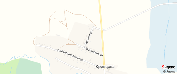 Луговая улица на карте деревни Кривцова с номерами домов
