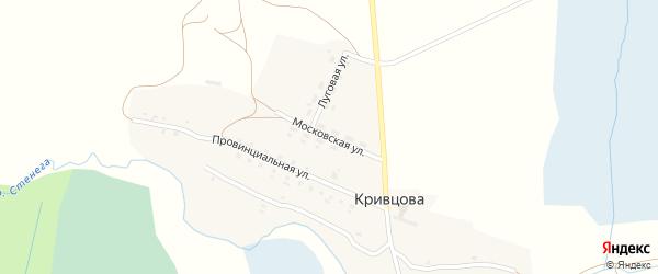Московская улица на карте деревни Кривцова с номерами домов