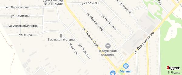 Улица Новый Свет на карте поселка Локтя с номерами домов