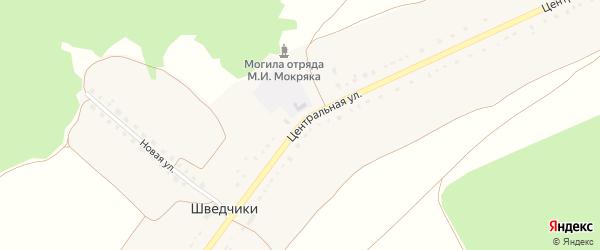 Центральная улица на карте села Шведчики с номерами домов