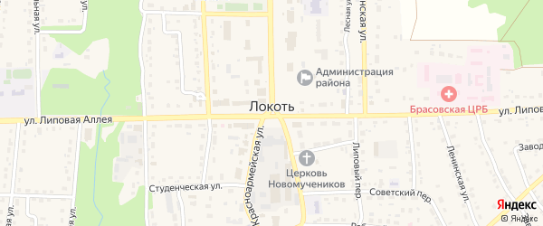 Территория СО Дружба на карте поселка Локтя с номерами домов
