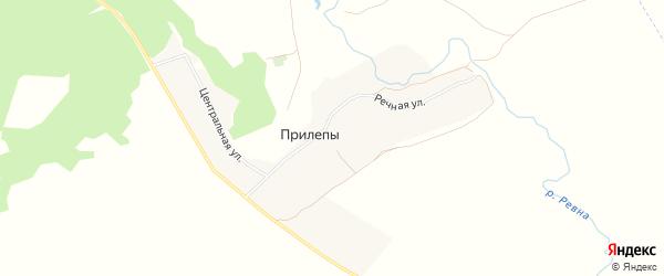 Карта деревни Прилепы в Брянской области с улицами и номерами домов