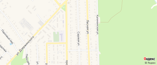 Садовая улица на карте поселка Локтя с номерами домов