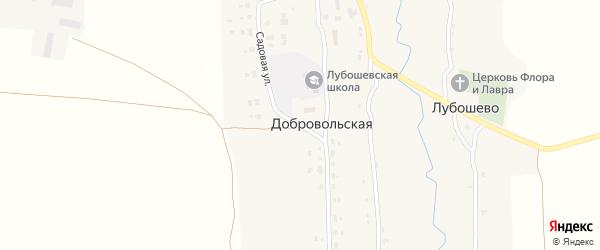 Садовая улица на карте Добровольской деревни с номерами домов