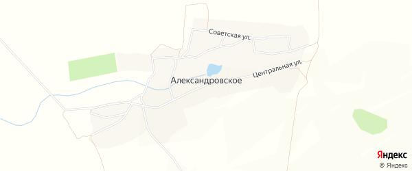 Карта Александровского села в Брянской области с улицами и номерами домов