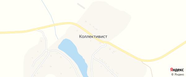 Липовая улица на карте поселка Коллективиста с номерами домов