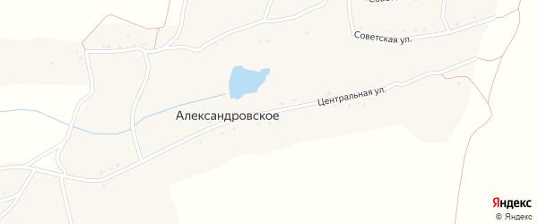 Центральная улица на карте Александровского села с номерами домов