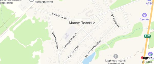 Молодежная улица на карте села Малое Полпино с номерами домов
