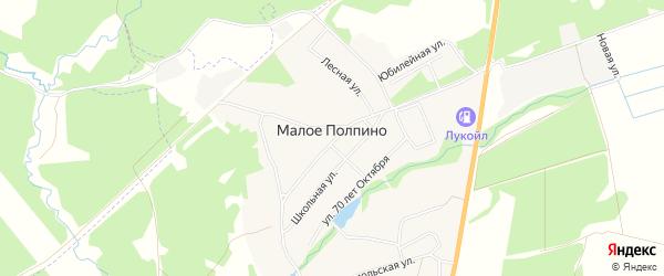 Карта села Малое Полпино в Брянской области с улицами и номерами домов