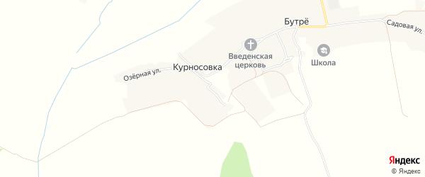 Карта деревни Курносовки в Брянской области с улицами и номерами домов