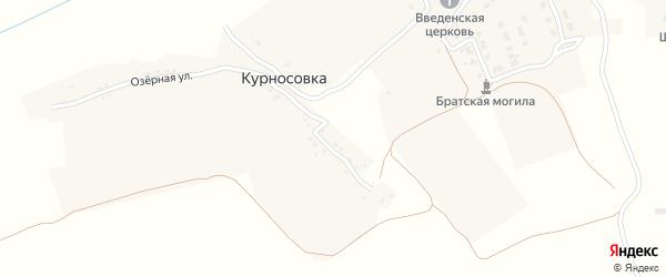 Озерная улица на карте деревни Курносовки с номерами домов