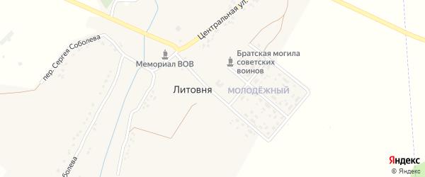 2-й Центральный переулок на карте села Литовни с номерами домов