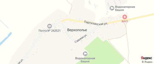 Территория сдт Работников Брянской ГРЭС на карте села Верхополья с номерами домов
