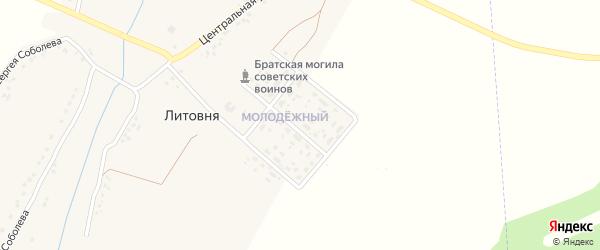 1-й Центральный переулок на карте села Литовни с номерами домов