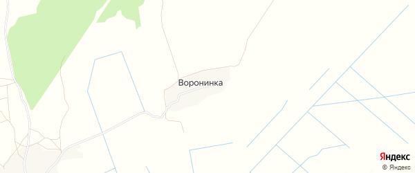 Карта деревни Воронинки в Брянской области с улицами и номерами домов