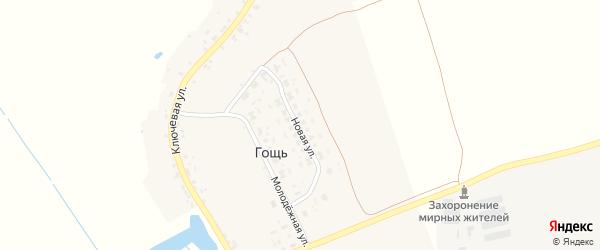 Новая улица на карте деревни Гощи с номерами домов