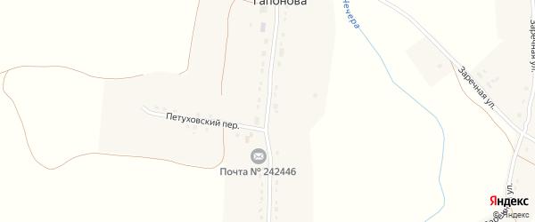 Центральная улица на карте села Гапонова с номерами домов