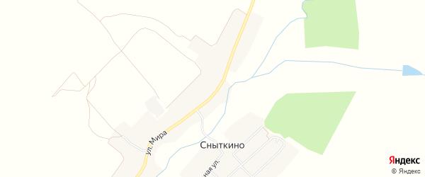 Карта деревни Сныткино в Брянской области с улицами и номерами домов