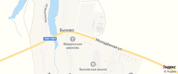Молодежная улица на карте села Быхово с номерами домов