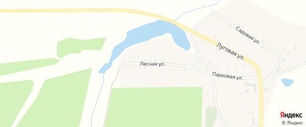 Лесная улица на карте поселка Красного с номерами домов
