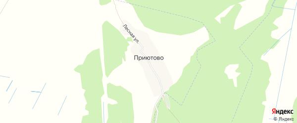Карта деревни Приютово в Брянской области с улицами и номерами домов