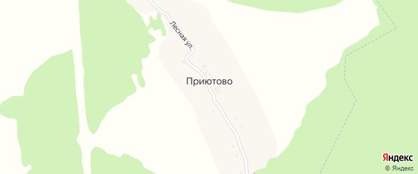 Лесная улица на карте деревни Приютово с номерами домов