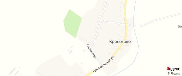 Центральная улица на карте села Кропотово с номерами домов