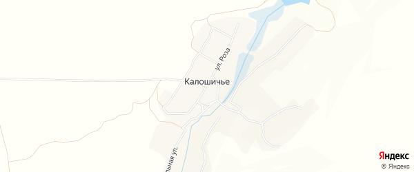 Карта села Калошичья в Брянской области с улицами и номерами домов