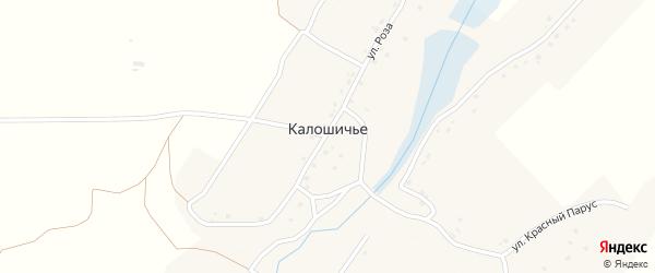 Улица Калиновка на карте села Калошичья с номерами домов