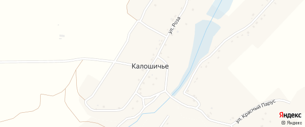 Улица Роза на карте села Калошичья с номерами домов