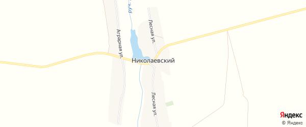 Карта Николаевского поселка в Брянской области с улицами и номерами домов