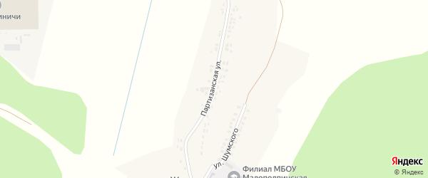 Партизанская улица на карте села Журиничей с номерами домов