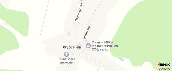 Улица Шумского на карте села Журиничей с номерами домов