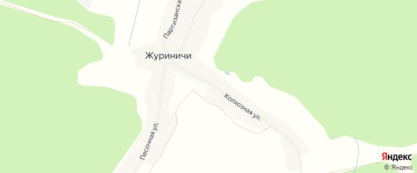 Карта села Журиничей в Брянской области с улицами и номерами домов