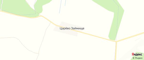 Карта деревни Царева Займища в Брянской области с улицами и номерами домов
