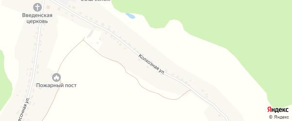 Колхозная улица на карте села Журиничей с номерами домов