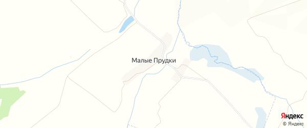 Карта деревни Малые Прудки в Брянской области с улицами и номерами домов