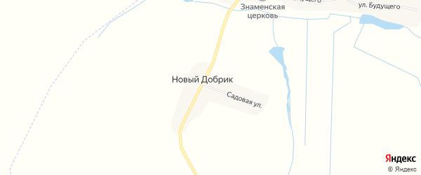 Карта поселка Нового Добрика в Брянской области с улицами и номерами домов